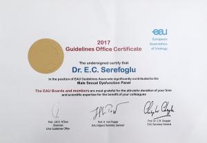 Avrupa Üroloji Derneği, Erkek Cinsel Fonksiyon Bozuklukları Klavuzu Paneli toplantısı